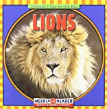 img - for Lions (Animals I See at the Zoo) book / textbook / text book