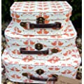 3 VINTAGE FOX SUITCASES STORAGE STACKING BOXES TERRACOTTA NEW