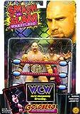 WCW Wrestling Smash 'N Slam Wrestlers Goldberg Vs. Masked Wrestler