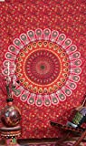 Reddish kaleidoscopic wall hanging - Block print floral Indian Tapestry