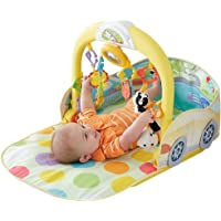 Fisher Price 3 in 1 Convertible Car Gym Playset