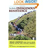 New World of Indigenous Resistance (City Lights Open Media)