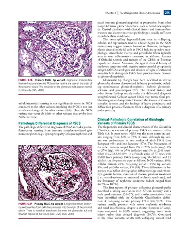 Heptinstall's Pathology of the Kidney J. Charles Jennette MD Vivette D. D'Agati MD Jean L. Olson MD Fred G. Silva MD LWW