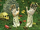 Bloody Zombie Arms & Hands Ground Breaker Lawn Stakes - Set of 2
