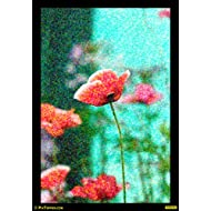 "PixTopper Poppies 03 Paper Poster(Large 44""x44"")"