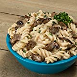 Bannock Savory Beef Stroganoff - 2.5 Servings / Pouch - Freeze Dried Camping, Hiking & Backpacking Meals - Cook in Pouch Camp Food