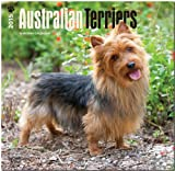 Australian Terriers 2015 Square 12x12