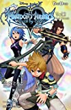 [小説版]KINGDOM HEARTS Birth by Sleep Vol.2 Best Friends