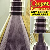 CLICK THE LISTING FOR CHEAPER PRICES - Capitol Purple - 66cm Wide - Stripe Striped Modern Long Hall Hallway Stair Carpet Runner Runners Rug