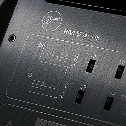 Swans H5 Multimedia Speaker