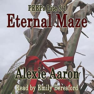 Eternal Maze Audiobook