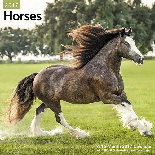 Horses Wall Calendar (2017)