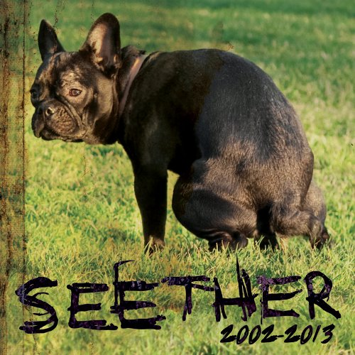 Seether - Holding Onto Strings Better Left To Fray [cddvd] [deluxe Edition] Disc 1 - Zortam Music