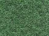 HMT 470004133 Evergreen