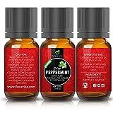Essential-Oils-Aromatherapy-Essential-Oil-Set-Lavender-Tea-Tree-Eucalyptus-Lemongrass-Orange-Peppermint-100-ORGANIC-Natural-Formula-The-Top-6-Most-Popular-Therapeutic-Grade-Oils-on-Amazon
