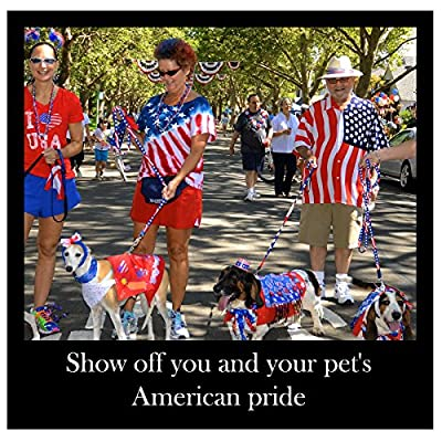 American Flag Adjustable Dog Collar and Leash Value SET on Sale. One Size Fits Most Small Dogs and Medium Dogs