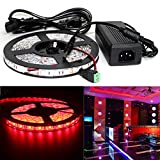 ELlight 5050SMD DC 12V 5m 16.5ft 300Led Flexible Christmas Lights Red Strip Lights Come with 12V 5A Power Supply Adapter Waterproof IP65