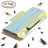 Trapro Insect Trap for Home Pest Control, Great for Cockroaches, Spiders and Other Bugs - 10 Traps