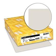 Neenah Exact Vellum Bristol, 67 lb, 8.5 x 11 Inches, 250 Sheets, Gray