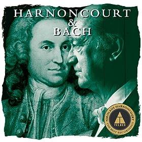 Brandenburg Concerto No.3 In G Major BWV1048 : II [Adagio]