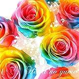 プリザーブドフラワーレインボーローズの花束 1本から本数指定可能! 枯れない夢のお花