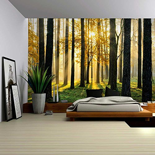 Wall26® A Peaking View Through the Forest of the Morning Sunrise - Wall Mural, Removable Sticker, Home Decor - 100x144 inches