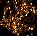 ABN Indoor String Lights, Dimmable LED String Lights for Bedroom, Patio, Party, Christmas Tree, Decor (Warm White 33ft)
