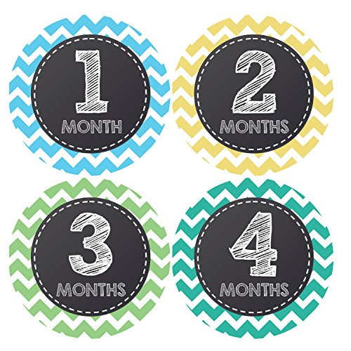 Pinkie Penguin Chalkboard Lettering Baby Monthly Stickers - Gender Neutral - 1-12 Months - Milestone Onesie Stickers