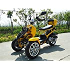DONGFANG 49cc Trike Scooter Gas Moped Zoom Yellow 3 Wheels