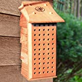 Schrodt Designs Model MB-L Mason Bee Lodge