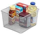 Silver Mesh Open Bin Storage Basket Organizer for Fruits, Vegetables, Pantry Items Toys, Etc.