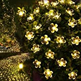 LE Solar Flower Fairy String Lights 50 LEDs 16.5ft , Waterproof, Warm White, Portable, Blossom Christmas Lights with Light Sensor, Outdoor and Indoor Use, Ideal for Wedding, Party, Halloween Lights Decoration