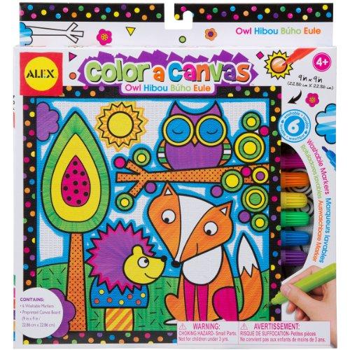 ALEX Toys Artist Studio Color a Canvas Owl Kit