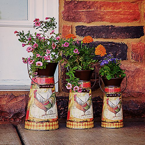 Janazala Metal Flower Pots Designed as Rustic Pitchers with Decorative Vintage Printing of Rooster on Each Flower Pot, Set of 3 2
