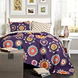 Lush Decor 3-Piece Adrianne Quilt Set, King, Purple