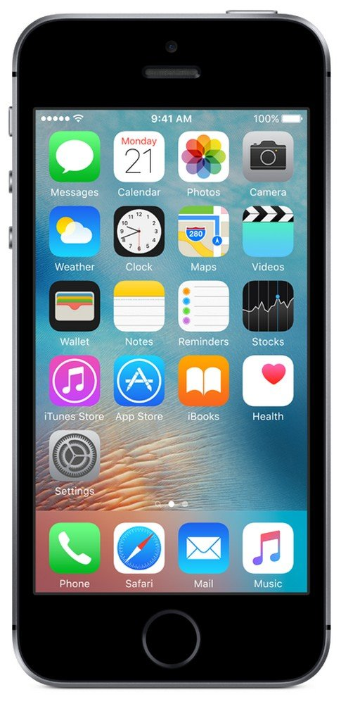 iPhone SE 16 GB (Space Grey)