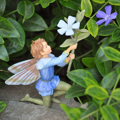 Periwinkle Flower Fairy