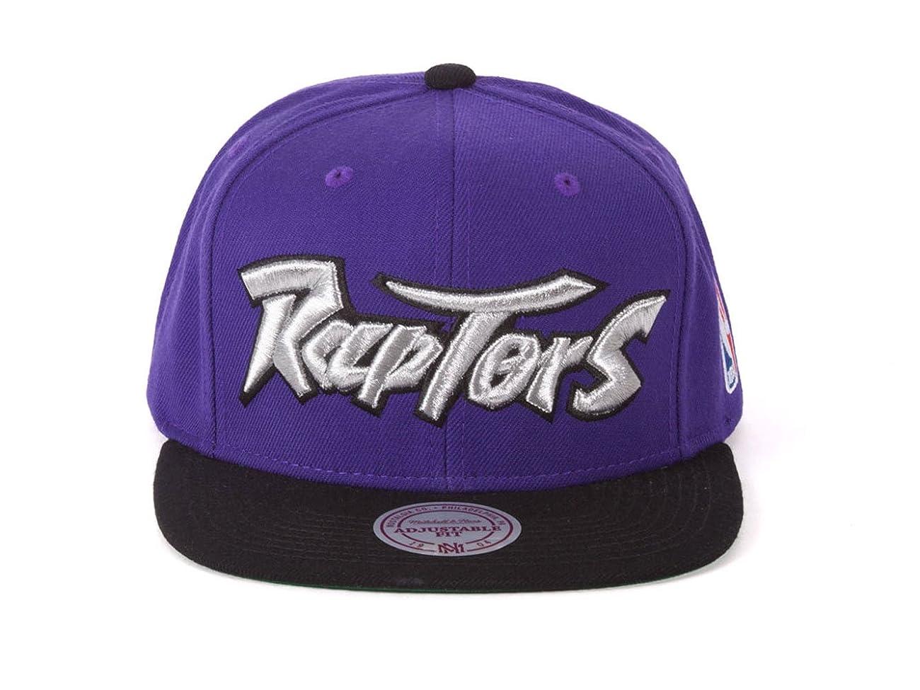 Toronto Raptors 2-Tone Vintage Snap back Hat 0