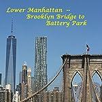 Lower Manhattan: From the Brooklyn Bridge to Battery Park | Maureen Reigh Quinn