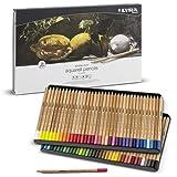 LYRA Rembrandt Aquarell Artists' Colored Pencils, Set of 72 Pencils, Assorted Colors (2011720) (Color: Assorted, Tamaño: 72 Aquarellstifte)