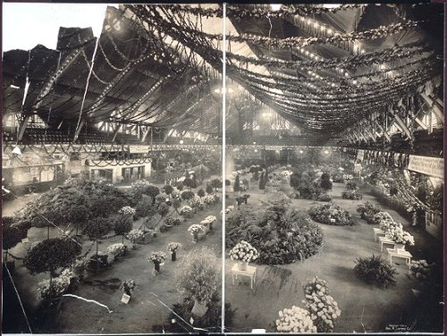Photo 15th Annual Flower Show, Coliseum Bldg., Chicago, Nov. 7, 1906 1906