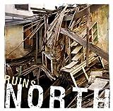 Ruins [Vinyl]