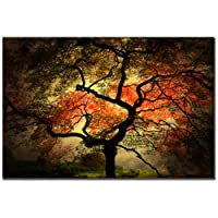 Superb Oil Paintings Trademark Fine Art Japanese Tree by Philippe Sainte Laudy Canvas Wall Art