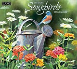 img - for Songbirds book / textbook / text book