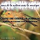 Chant des oiseaux de guérison: sons de la nature avec la...