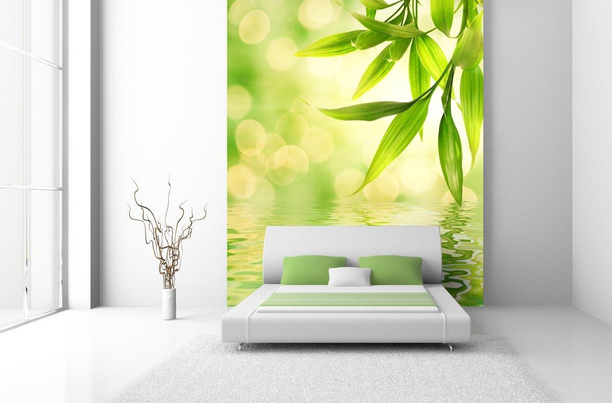 Fototapete Green Reflection in verschiedenen Größen  als Papiertapete oder Vliestapete wählbar  PVC frei, geruchloser, umweltfreundlicher Latexdruck ohne Lösemittel  Motivtapete Postertapete Bildtapete Wall Mural von Trendwände  BaumarktRezension