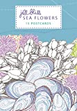 Sea Flowers: 15 Postcards