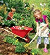 Red-Poly Childs 338243 Wheelbarrow
