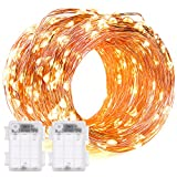 String Lights, DecorNova 2 Set of 19.7ft 60 LEDs IP44 Waterproof Super Bright Copper Wire Rope Lights with Timer for Christmas Home Bedroom Party Tree, 3AA Battery Case, Warm White