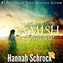 A Big Beautiful Amish Courtship: Amish Romance Audiobook by Hannah Schrock Narrated by Mary Ann Hay